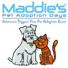 pet_adoptions_may